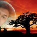 ligar gratis como Sabir