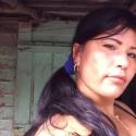 Arileybis