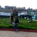 Biraja Pattanaik