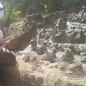 buscar mujeres solteras con foto como Orquidea_52
