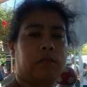Pachonchita