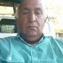 Pedro J Daza A