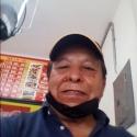 Tammex