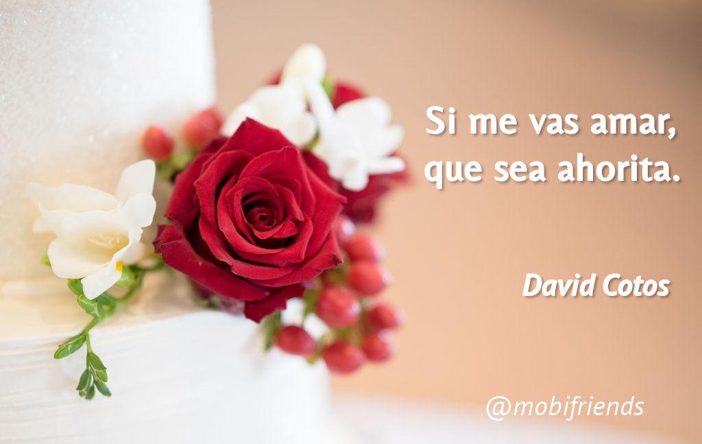 Amor Amar Ahora Tu Yo