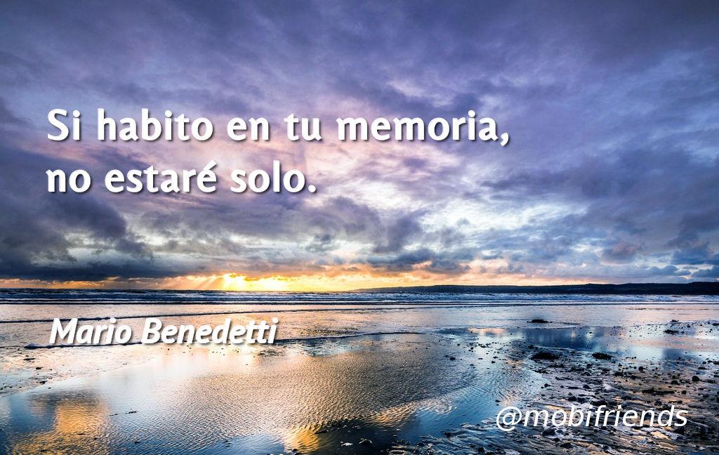Amor Amistad Memoria Compania Soledad