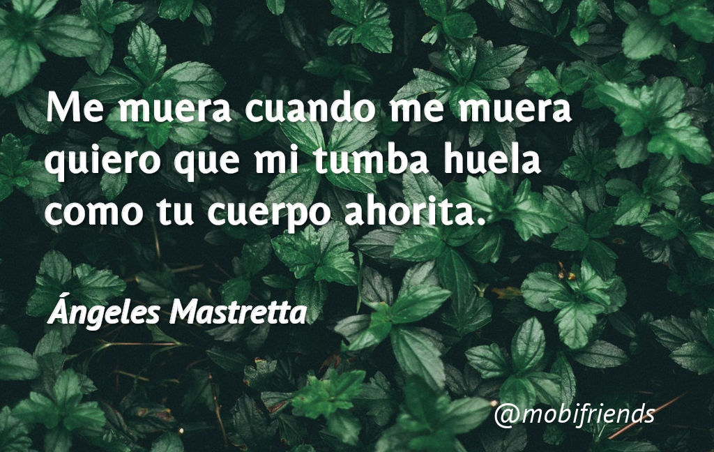 Frases De Amor De Angeles Mastretta Mobifriends