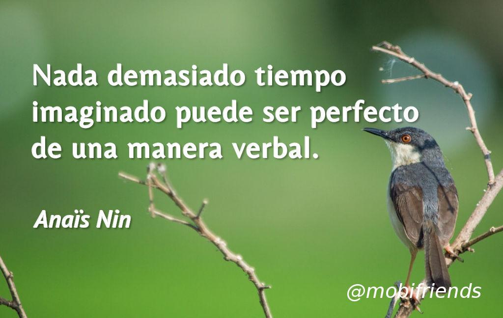Amor Ideal Imaginar Perfecto Palabras