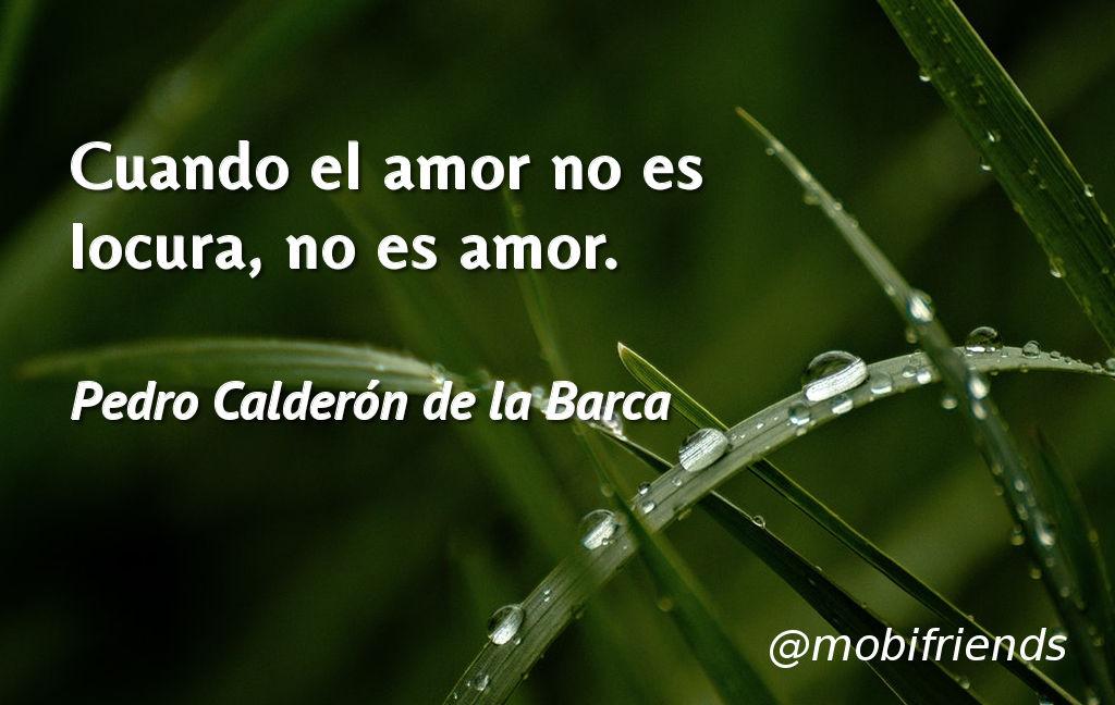 Cuando El Amor No Es Locura No Es Amor Frases De Amor