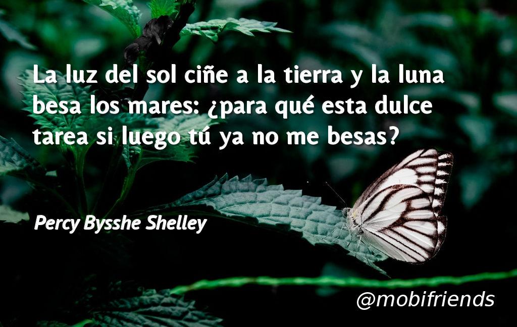 Frases De Amor Sobre Soledad Mobifriends
