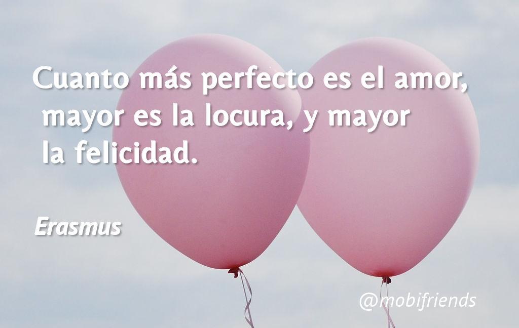 Amor Perfeccion Locura Felicidad Amar