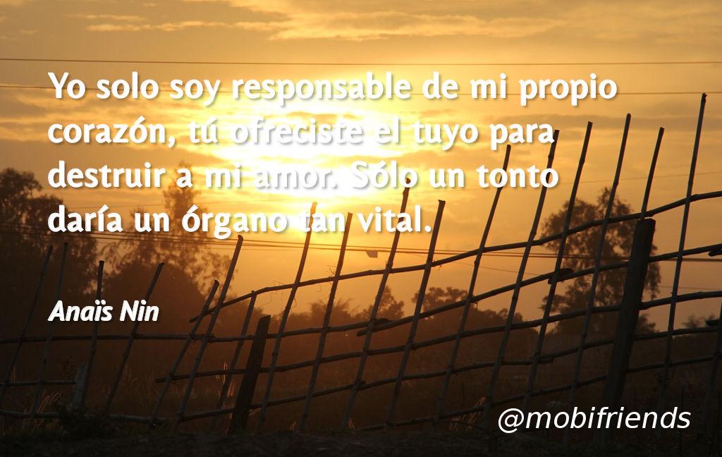 Corazon Amor Ofrecer Cuidar Destruir