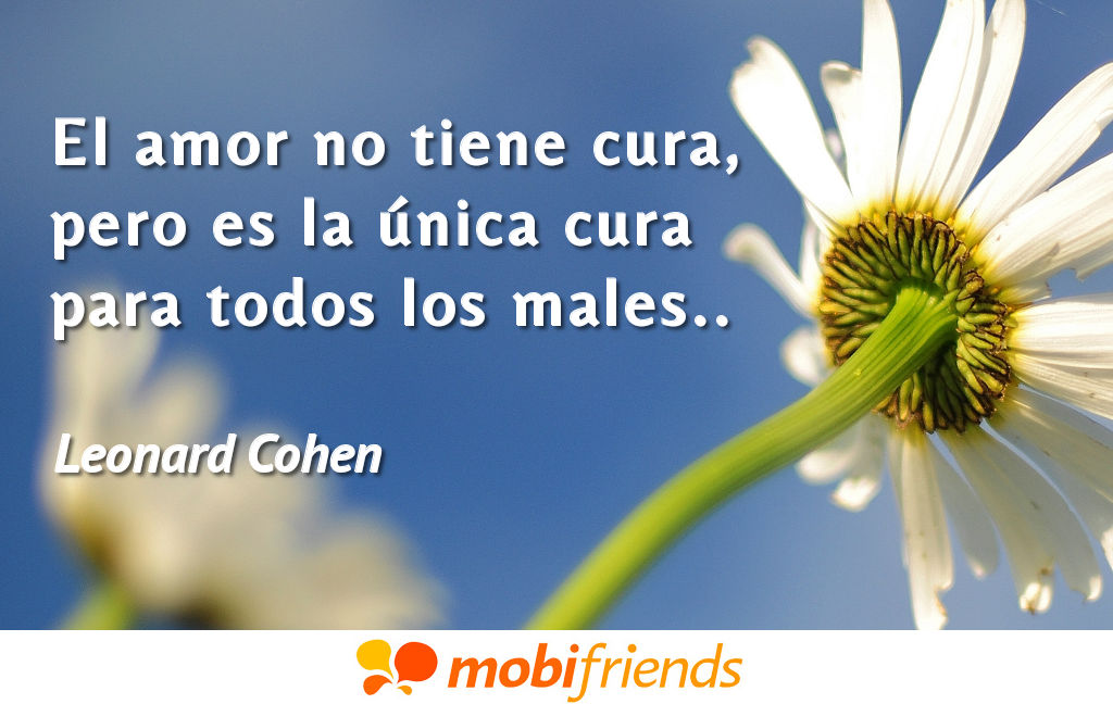 Frases amor cortas cura males