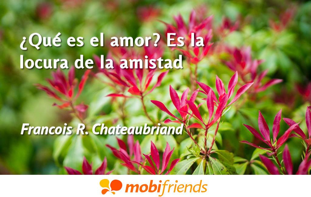 Que Es El Amor Es La Locura De La Amistad Frases De Amor