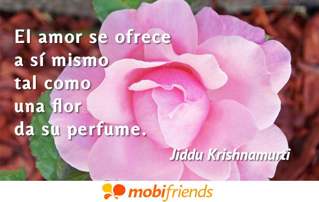 Frases De Amor Sobre Perfume Mobifriends