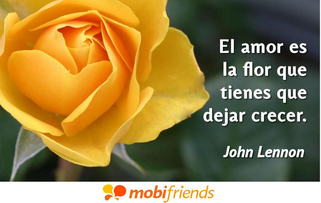 Frases amor novia flor