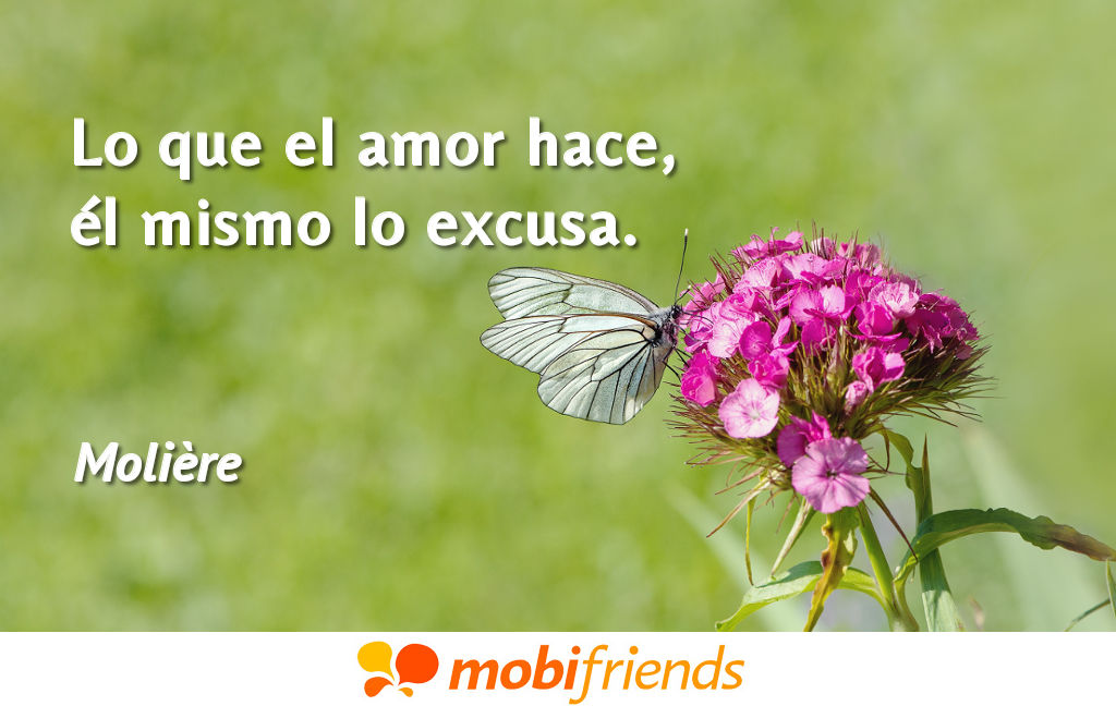 Frases bonitas amor excusa