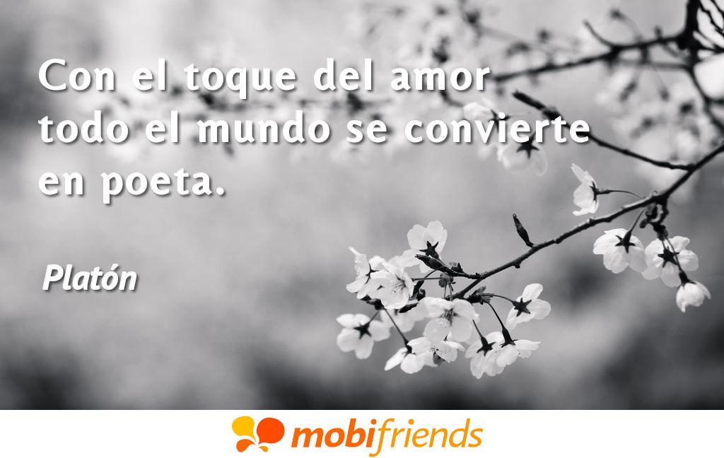 Con El Toque Del Amor Todo El Mundo Se Frases De Amor