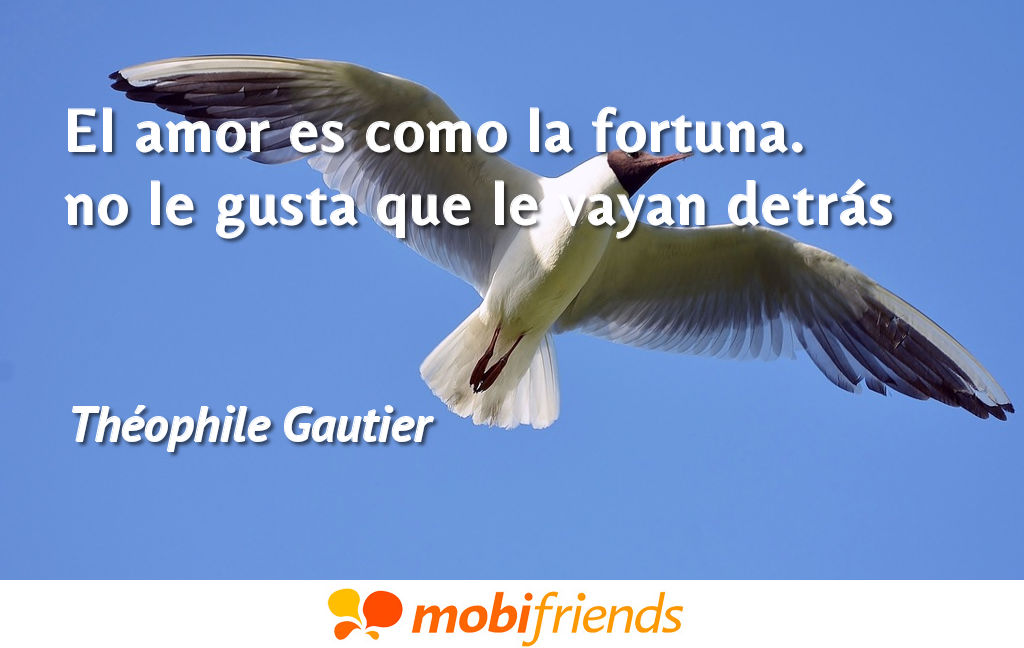 Frases ironicas amor fortuna