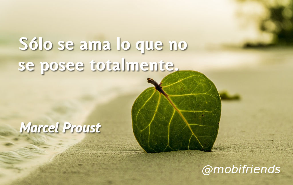 Frases ironicas amor posesion
