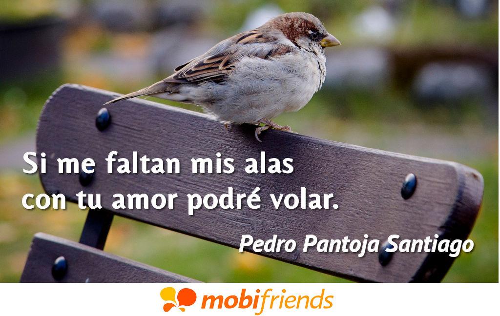 Si Me Faltan Mis Alas Con Tu Amor Podré Frases De Amor