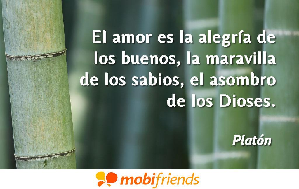 Frases De Amor De Platon Mobifriends