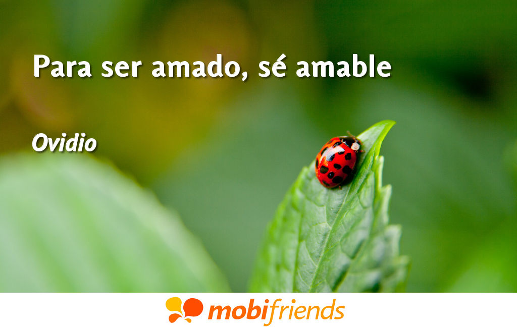 Frases ser amado amable