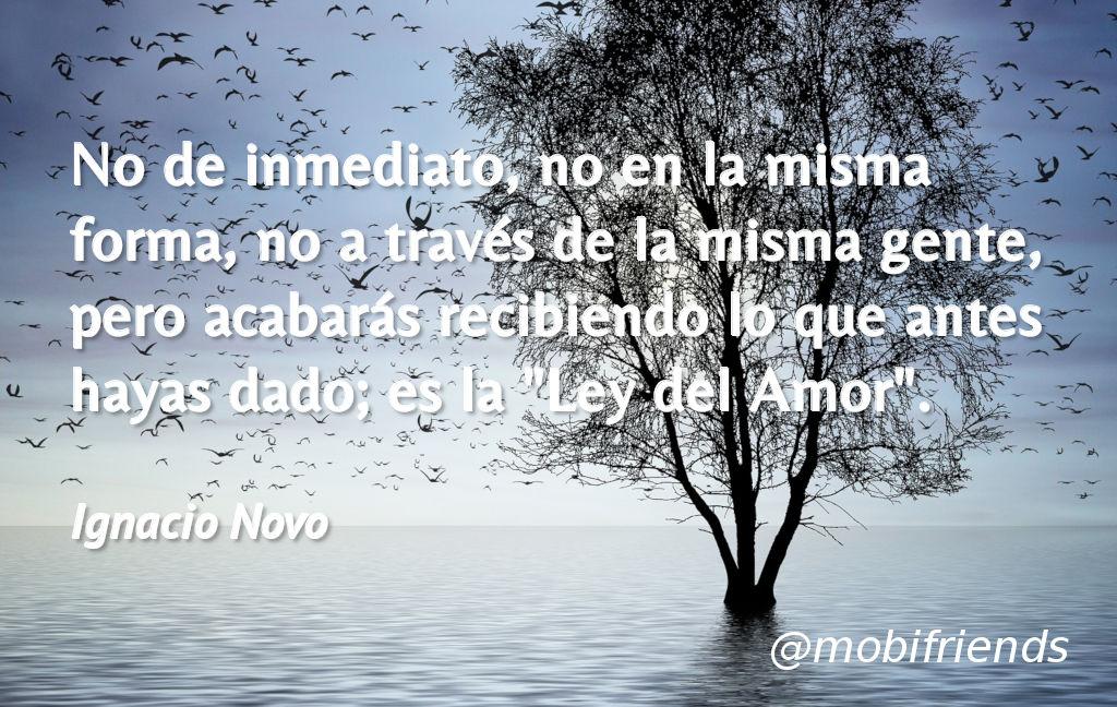 No De Inmediato No En La Misma Forma No A Frases De Amor