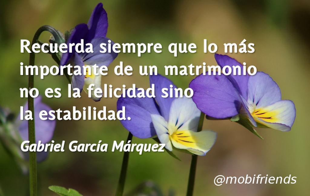 Matrimonio Amor Felicidad Importante Estabilidad