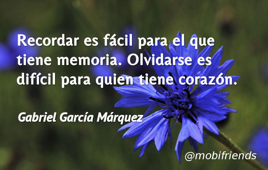 Recuerdo Memoria Olvido Corazon Amor
