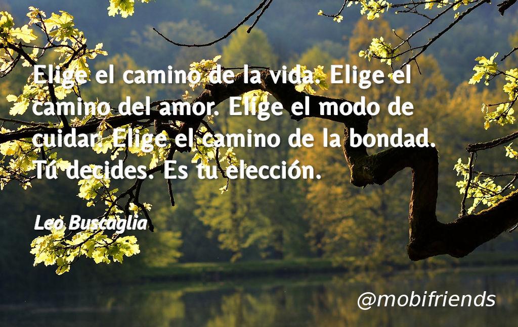 Elige El Camino De La Vida Elige El Camino Frases De Amor