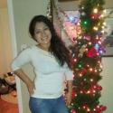 Lisenia