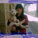Nicolll